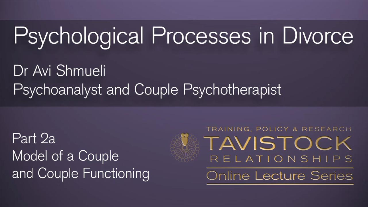 Psychological Processes in Divorce - Part 2a. Model of a Couple and Couple Functioning.