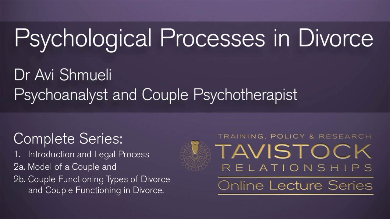 Psychological Processes in Divorce Complete Series