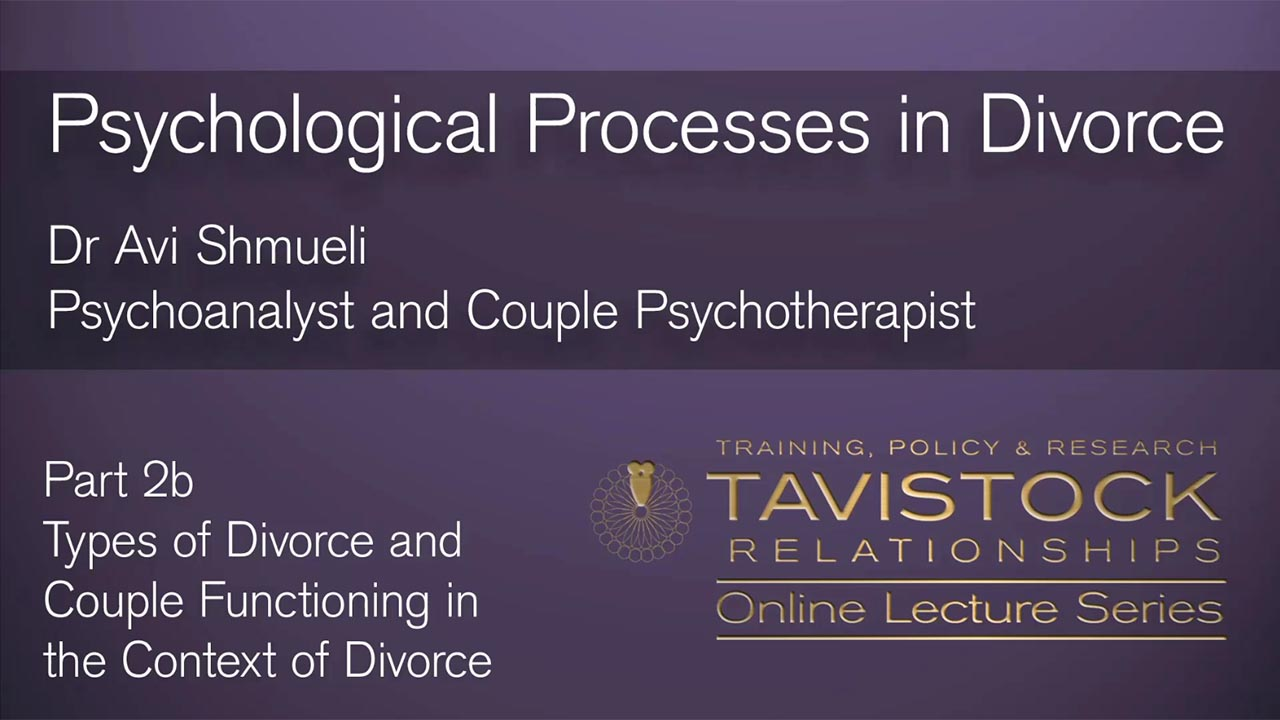 Psychological Processes in Divorce - Part 2b. Types of Divorce and Couple Functioning in Divorce.